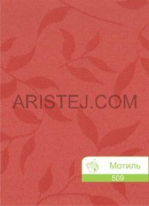 motyl-509